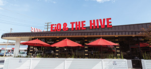 eiO the hive
