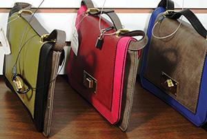 Handbag Security Application with caption